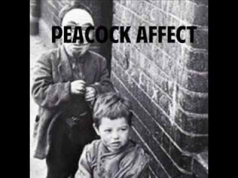 Peacock Affect - Wallflower