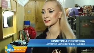 В Саратовском цирке начались гастроли уникального шоу на воде