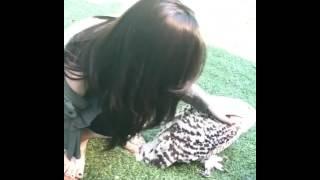 손나은 인스타 (사진 및 영상)