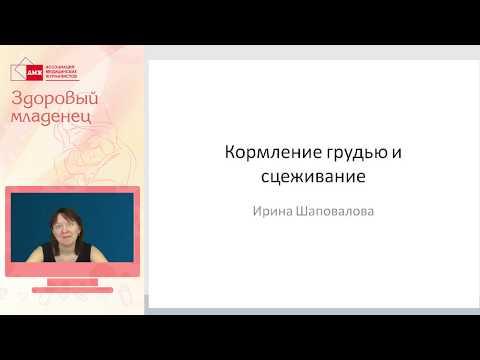 Шаповалова И. \