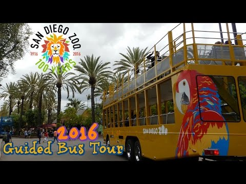 SAN DIEGO ZOO GUIDED BUS TOUR 2016 POV San Diego California