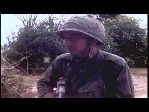 US 1st Infantry Division moves forward on fields in Vietnam. HD Stock Footage