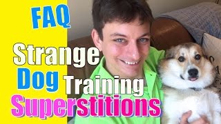 Do You Believe These 2 Common Dog Training Superstitions? FAQ