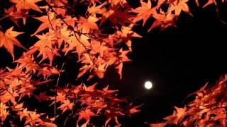 女優でピアニストそして、作曲家でもある、松下奈緒さんの「紅葉」を演...