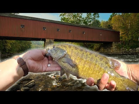 Covered Bridges & Bronzebacks (Fishing The HOUSATONIC River)