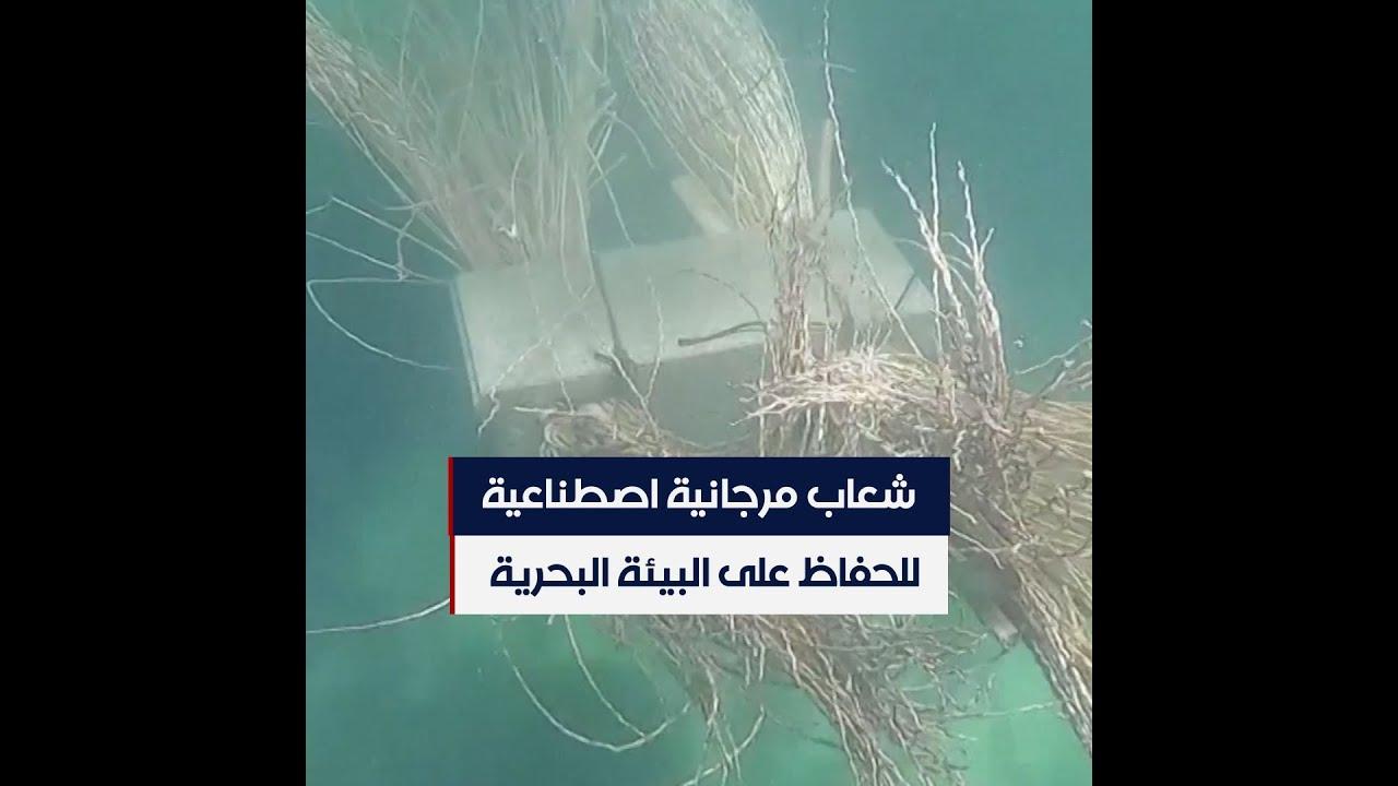 شعاب مرجانية اصطناعية من سعف النخيل لحماية البيئة البحرية في تونس  - 00:54-2021 / 6 / 9