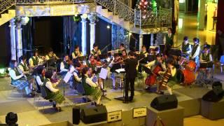 2012-12-10-1630_太古城中心_藍田聖保祿中學樂