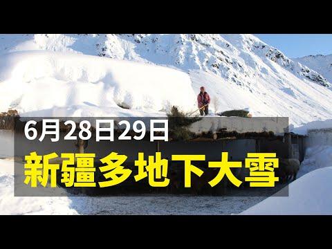 新疆伊犁等多地6月飞雪 网民:让我想起窦娥冤!(图/视频)