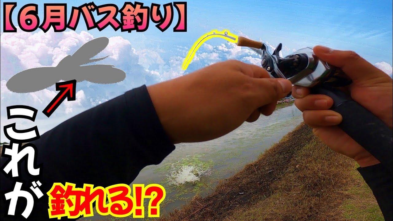 【6月バス釣り】『劇濁り』小規模河川◯◯投げれば釣れる‼️【佐賀バス釣り】