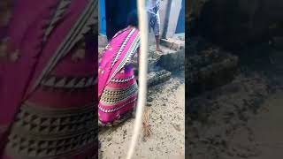 Women's Fight in Local Street.