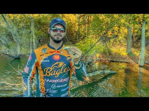 Get Snagged Lures Back By Using Your Rod (IF YOU DARE)