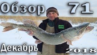 Рыбалка в Декабре обзор № 71 Зимняя рыбалка в Казахстане