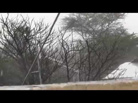 Roobabkii Guga oo ka curtay Hargeysa by wariye Samakaab Africa Cable TV
