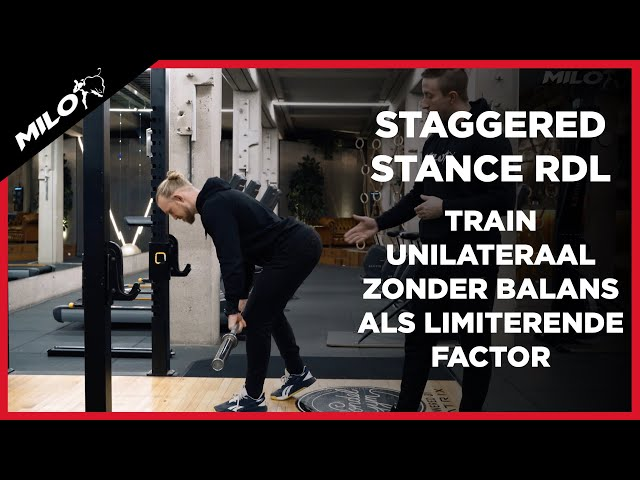 Staggered Stance Romanian Deadlift