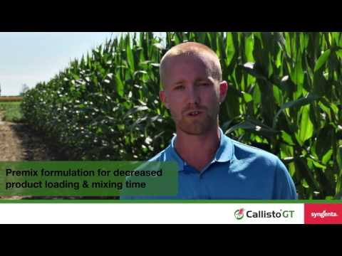 The Convenient, Powerful Post-emergent Herbicide For GT Corn