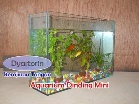 Cara Membuat Aquarium Dinding Mini Youtube