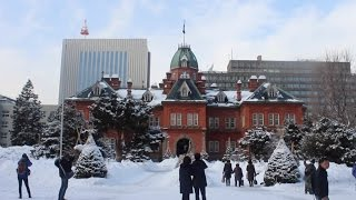 Hokkaido Japan Winter Travel + Ice Breaker Cruise 「 北海道の冬 ( 5泊7日 ) 」