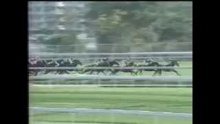 Sunline v Fairy King Prawn December 17 2000 Thumbnail