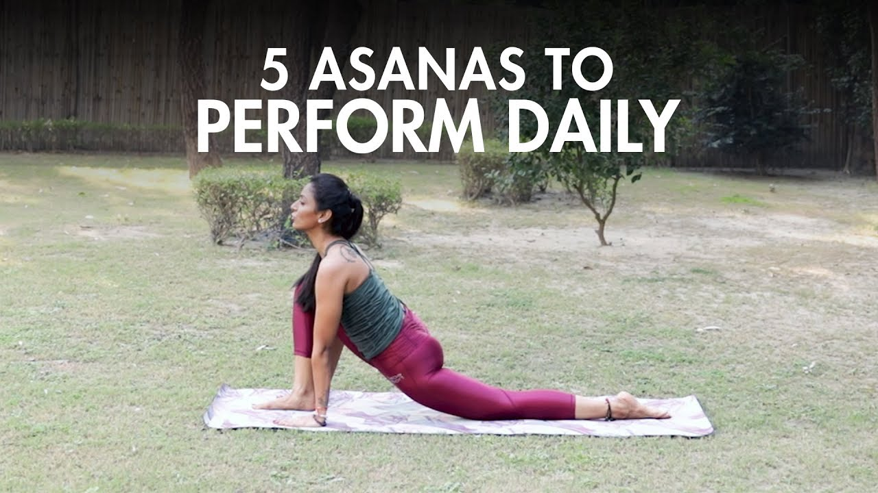 5 Yoga Asanas You Should Do Daily Yoga Fit Tak Youtube