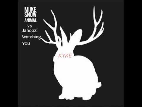 Miike Snow - Animal vs Jahcoozi - Watching You (KYKE's Mashup)