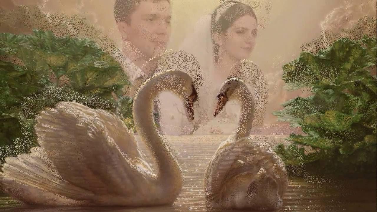 Классные поздравления на свадьбу в ютубе