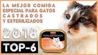 La mejor 🔥 Comida Especial para Gatos Castrados y Esterilizados 😸 TOP-6 🔥
