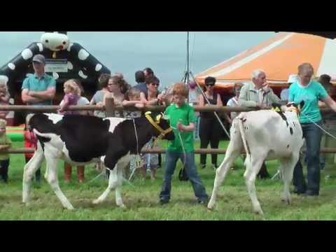 Jongveedag   Peel en Maas 2016 Namiddag programma