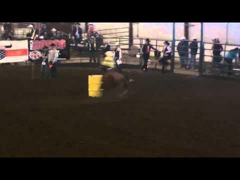"""TM Bull T Dakota """"Dino"""" Fargo Rodeo 2"""