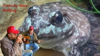 Kentucky River Bullfrog The Moron Brothers Bluegrass Music Comedy