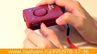 видео Купить отпугиватель кротов SITITEK Гром-Профи М