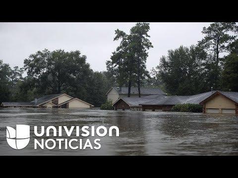 Univision - Huracán Harvey: Inundación de 54 pies cubre esperanzas de residentes de La Grange, TexaS