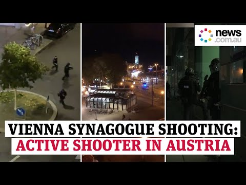 Vienna synagogue shooting: Active shooter situation in Austria