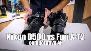 Nikon D500 vs Fuji X-T2: comparativa AF