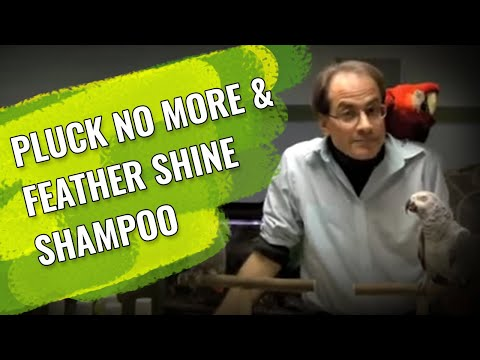 Marc Morrone talks about Pluck No More & Feather Shine Shampoo