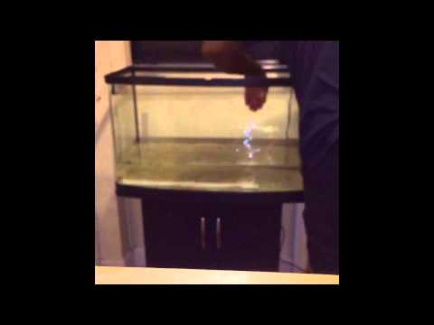 Installation Of Interpet Fish Pod 120 Fishtank And Stand