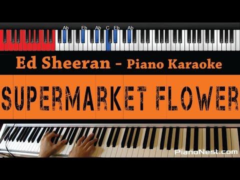Ed Sheeran - Supermarket Flower - HIGHER Key Piano Karaoke  Sing Along
