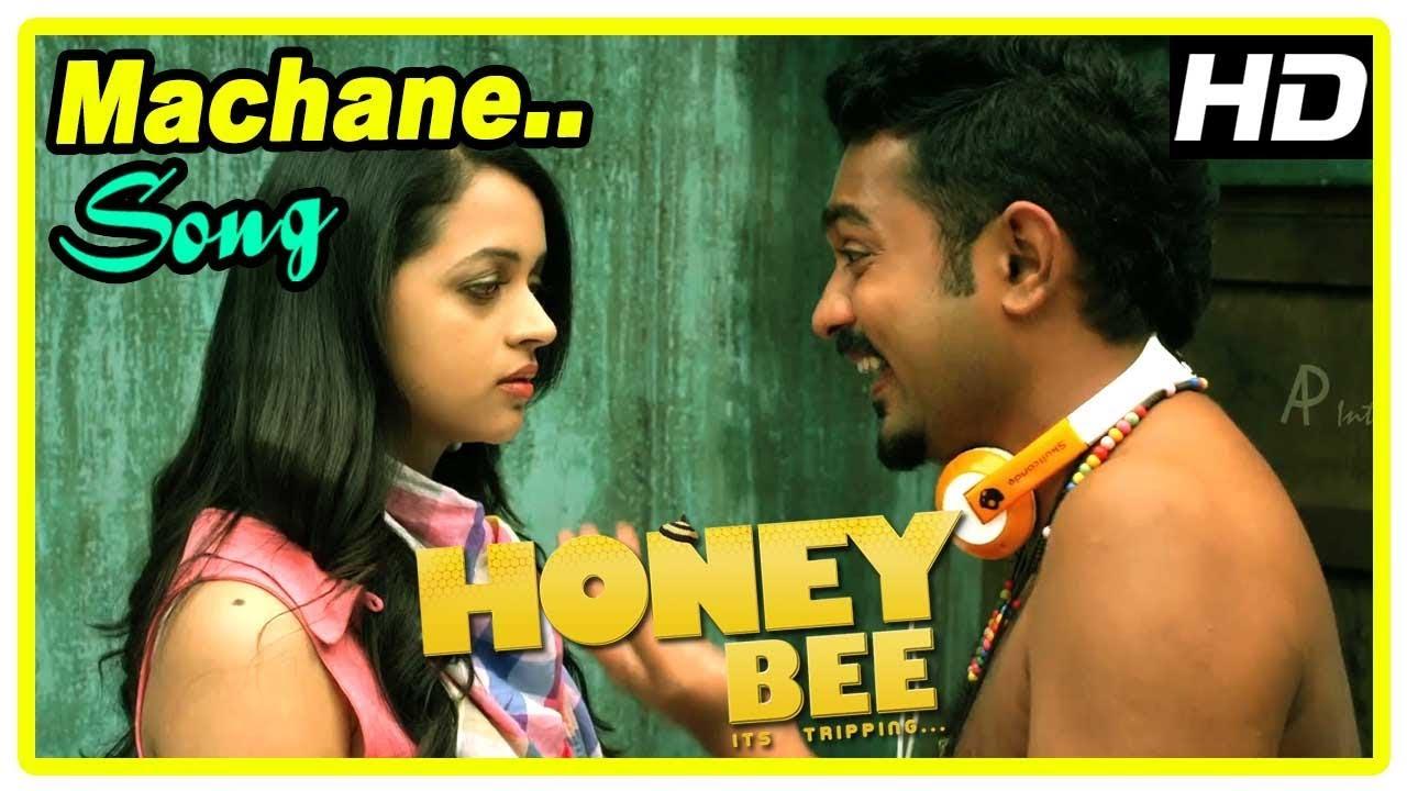 machane machu honey bee song