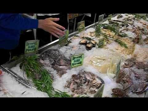 Casablanca miami fish market youtube for Fish market miami