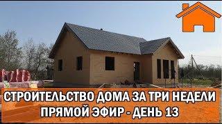 Строительство дома за 3 недели, прямой эфир. День 13-ый.