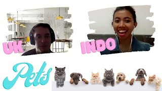 Pets | What are the differences and similarities in the UK and Indonesia | Episode 1 (Q&A)
