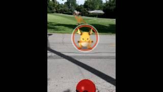 Pokemon Go How to Catch A Wild Raichu