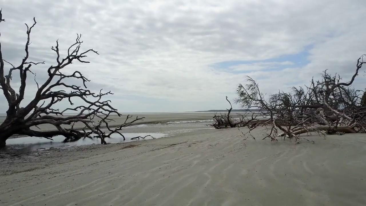 Ossabaw Island Beach You