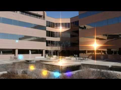 Colorado State University Global Campus || Best Online Colleges in USA | World Top Colleges