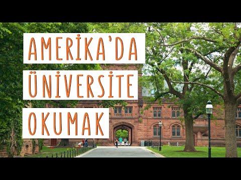 Amerika'da Üniversite Okumak! Başvuru Süreci Ve Şartlar