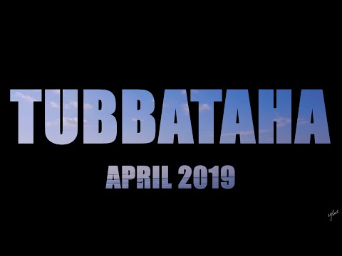 Diving Tubbataha - April 2019