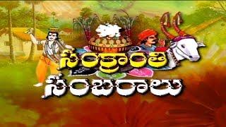 Sankranthi Festival Grand Celebrations in Godavari Districts || Special Focus || NTV