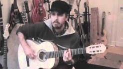 TOP Anfänger Akustikgitarre Pro Natura Gold, Gitarre lernen online