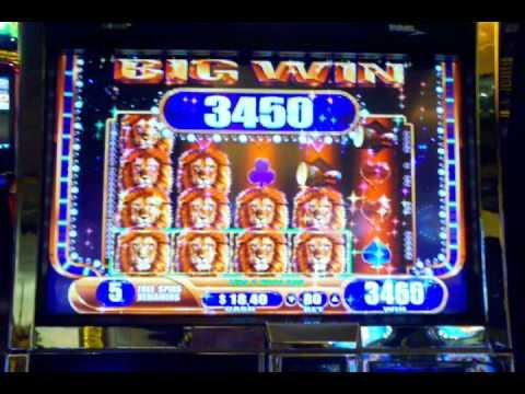 WMS King Of Africa Video Slot Machine Bonus And Progressive Win.3gp