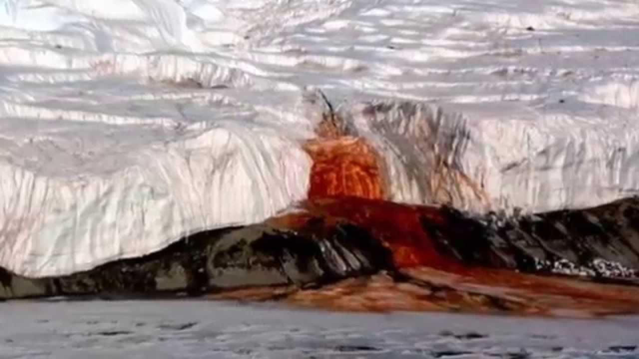 Blood Falls - The Glacier That Bleeds - Source Discovered   Science News