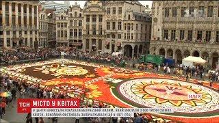 У центрі Брюсселя створили гігантський килим зі свіжих квітів